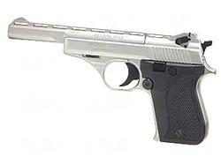 Phoenix Arms Range Master KT .22LR 5-inch Nickel