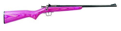 Crickett .22LR Pink LAM with Blued Barrel