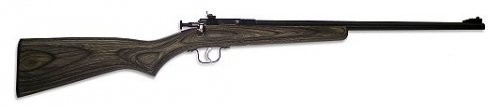 Crickett .22LR Black LAM with Blued Barrel